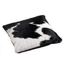 Cow kohudskudde