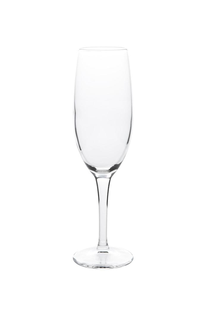 Champagneglas - Glas - Klar - D 4,5cm - H 19,5cm - 0,17l - Stk.