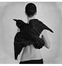Raven's Ladder fotoprint 100x100