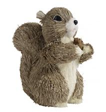 Egern, H-19