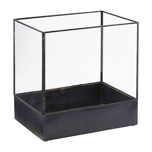 Display box, Plant, Sort antik ,l: 21 cm, w: 30 cm, h: 30 cm