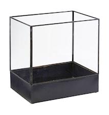 Display box, Plant, Black antique ,l: 21 cm, w: 30 cm, h: 30 cm
