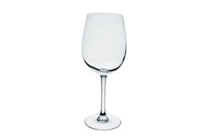 Viinilasi Tulppaani 25cl