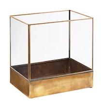 Display box, Plant, Antique brass ,l: 21 cm, w: 30 cm, h: 30 cm