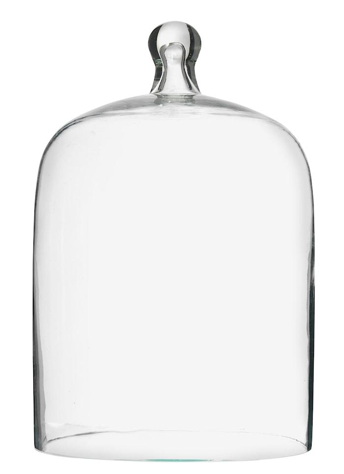 Kupol i Glas Ø 15 cm