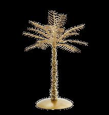 Iron palm tree