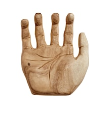 Skål Hand