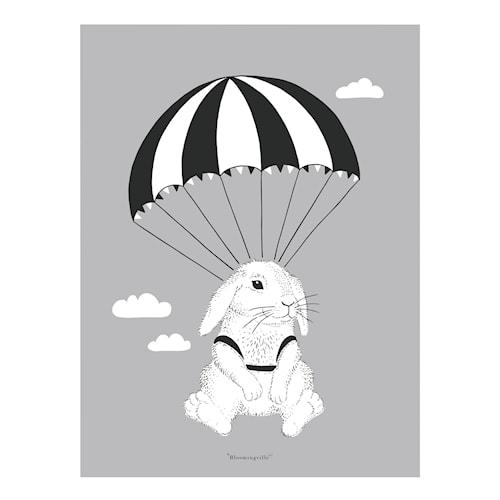 Affisch Kanin - Grå