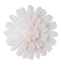 Snøblomst 68 white