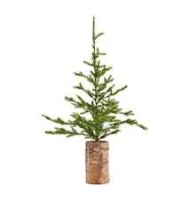 Julgran med ljus 90x55x80cm Grön