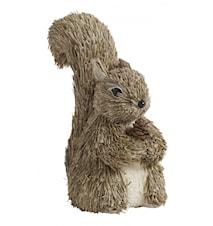 Squirrel, h-16
