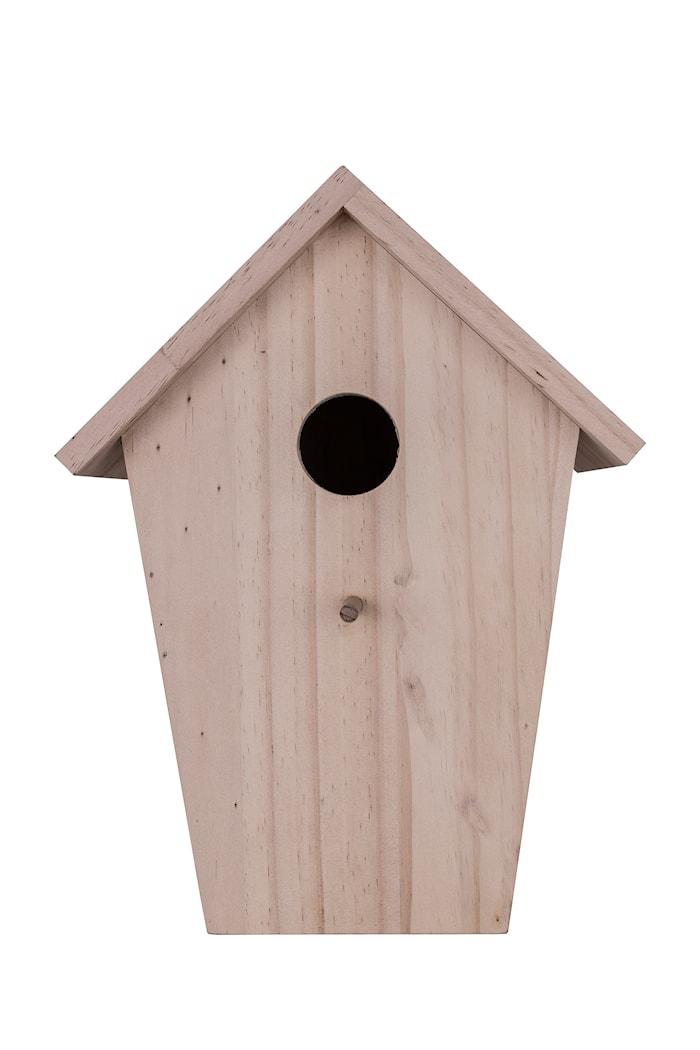 Vägg/Bordslampa Cuckoo Natur