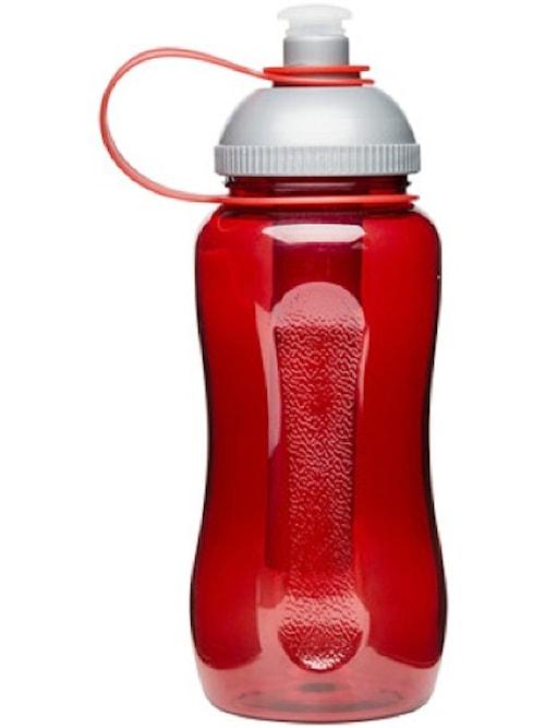 Vattenflaska med Iskolv Rosa