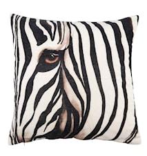 Pude Zebra 50x50 cm