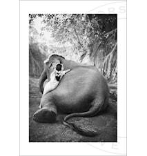 Adele & Ketut fotoprint - 100x70
