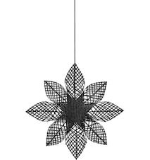 Anna Star Sort 68cm