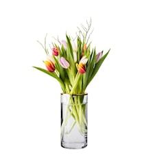 Vase klarglas 2 stk låg krom og messing 20*10 cm