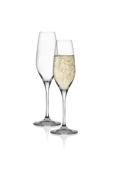 Aura Champagneglas 20cl 4-pack