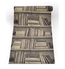 Bookshelf sepia Tapetti