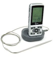 Trådlös portabel termometer