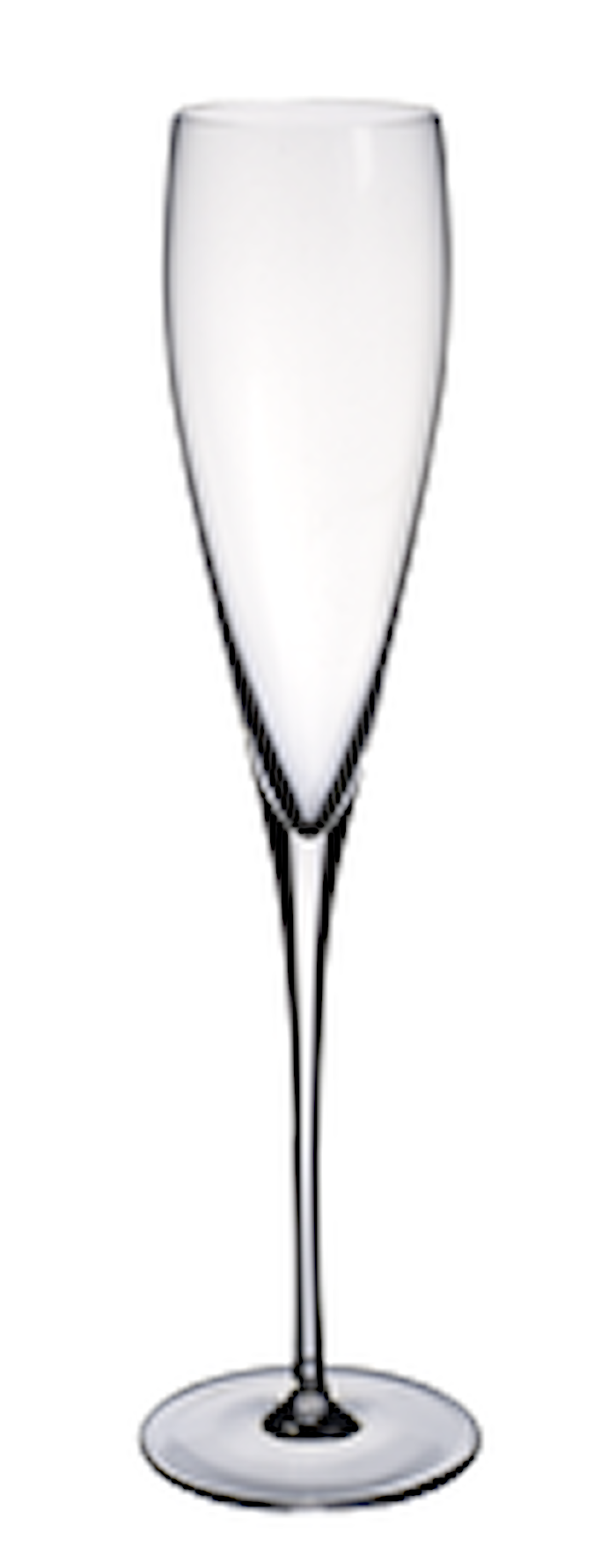 Allegorie Preimium Champagneglass